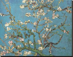 vincent-van-gogh-almond-branches-in-bloom-san-remy-c-1890.jpg