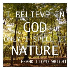 frank-lloyd-wright-quote--1-.jpg